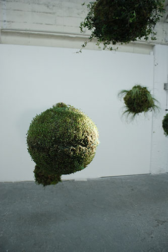 Meadhbh O'Connor, Biosystem, 2010, installation art