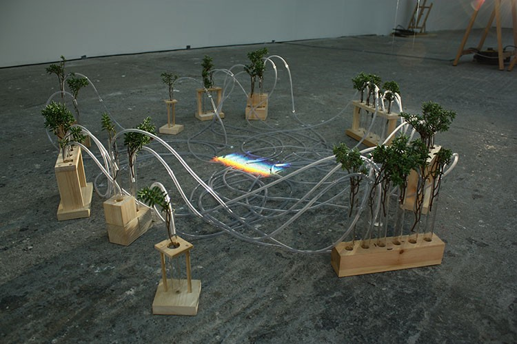 Meadhbh O'Connor, Spectraphagia, installation art