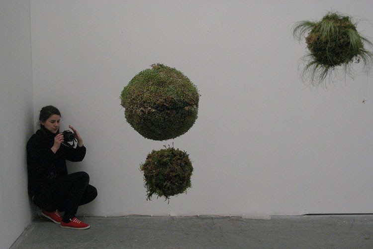 Meadhbh O'Connor, Biosystem, 2010, installation art