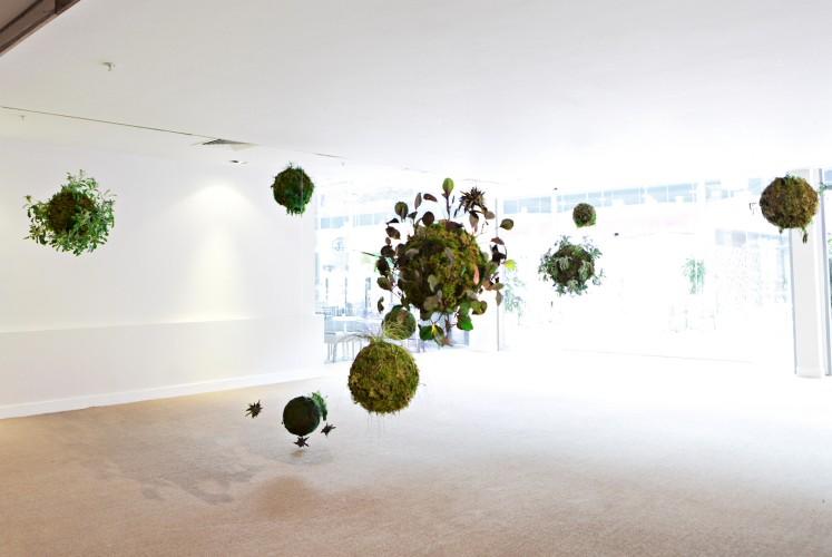 Meadhbh O'Connor, 'Biosystem II', Dublin Biennial 2014. Photo: David Orr.