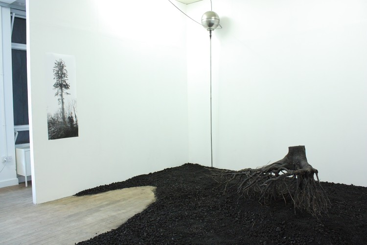 Meadhbh O'Connor, contemporary art, installation art, environmental art