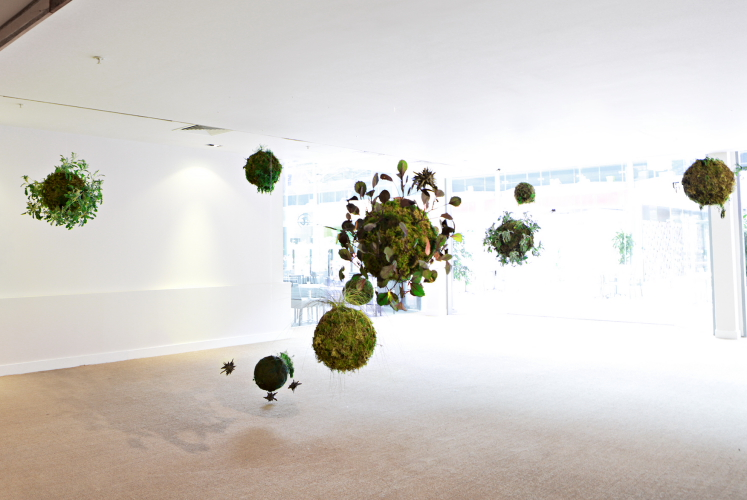 'Biosphere II', 2014. By Méadhbh O'Connor and commissioned by Dublin Biennial 2014. Photo: David Orr.