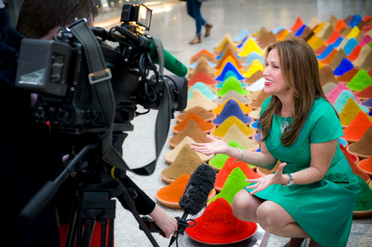 Sonia Falcone speaks to RTE News, Dublin Biennial 2014. Copyright Natalie Lim.